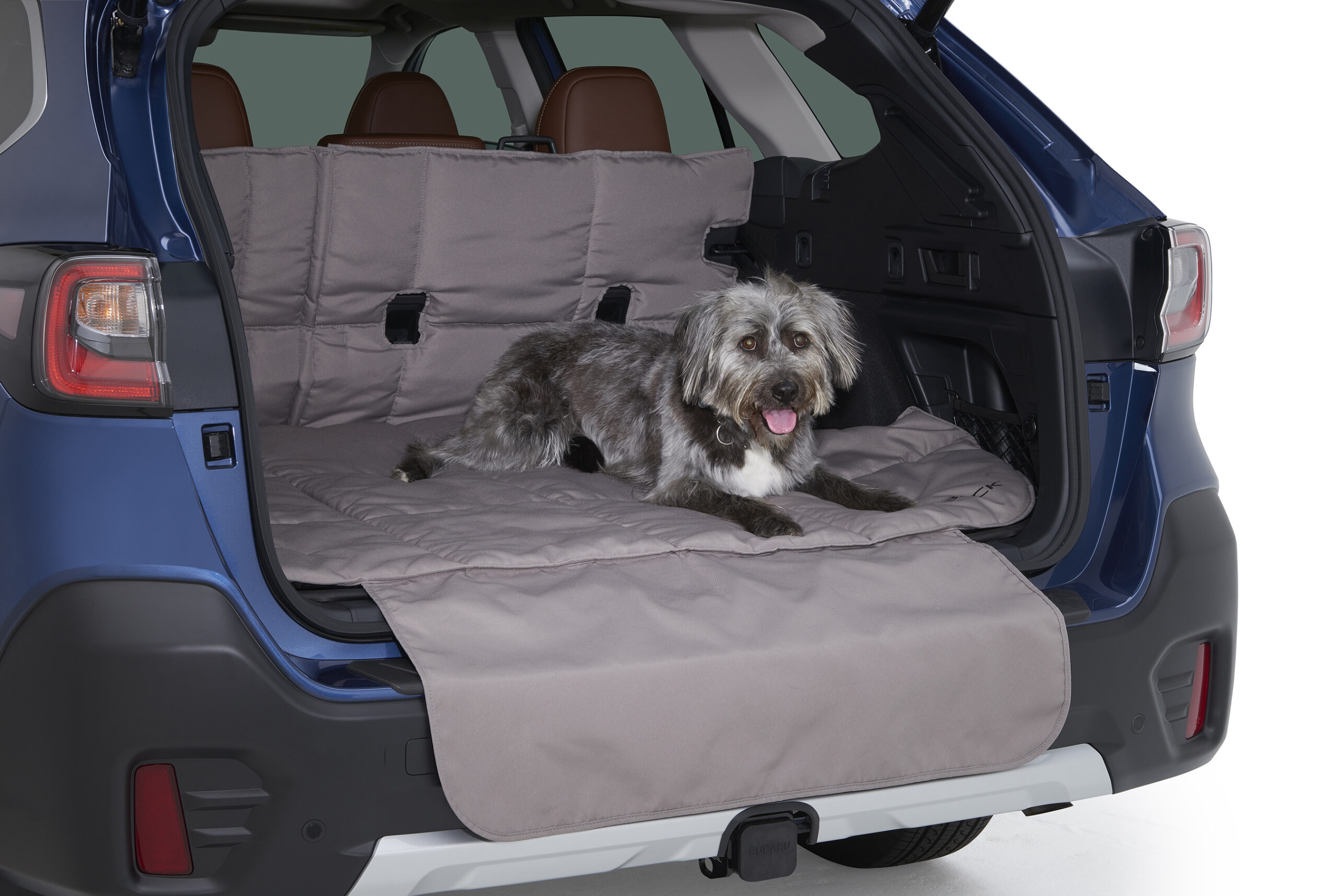 Subaru pet accessories, with a dog on a cargo-area mat.