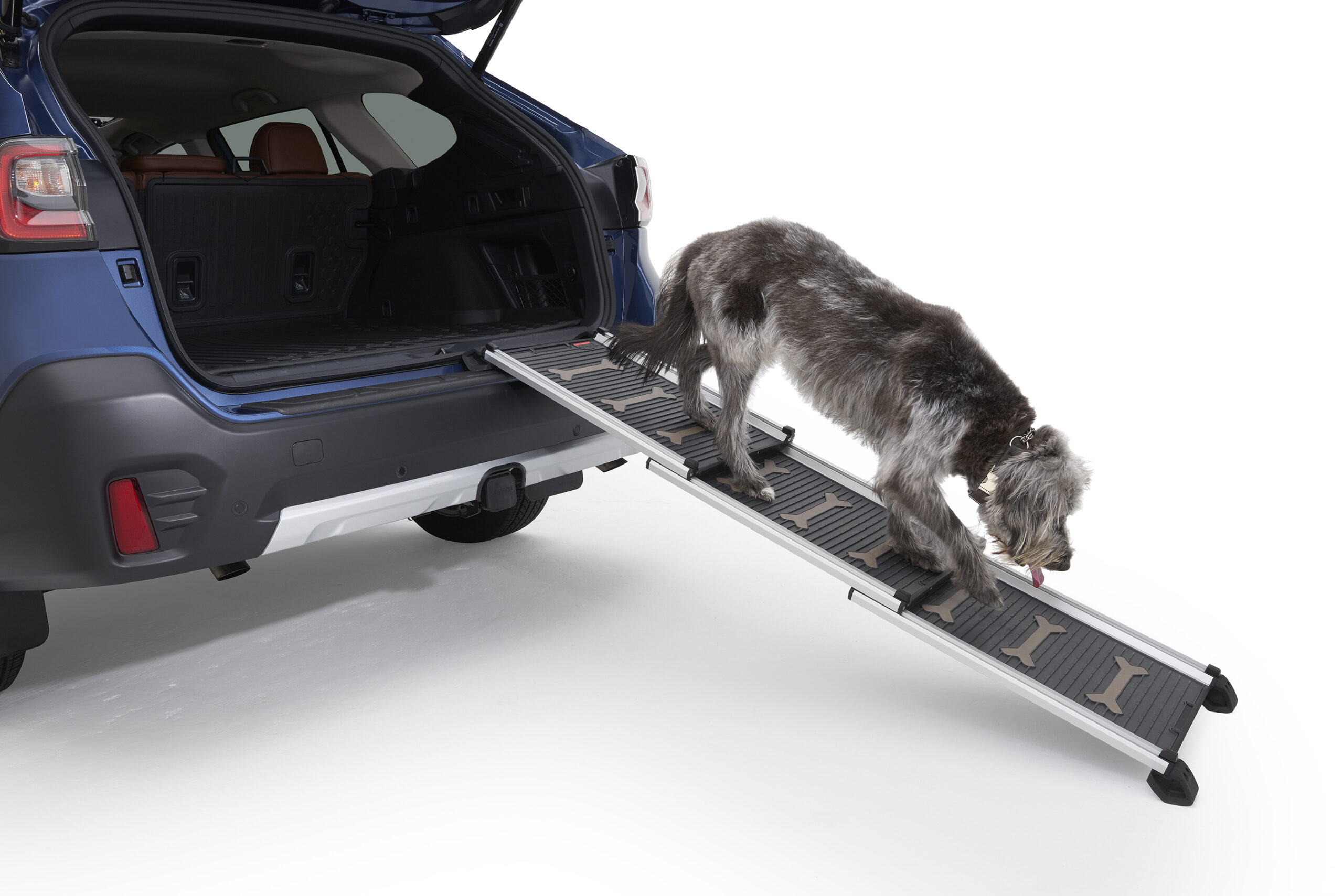 Subaru pet accessories dog ramp.